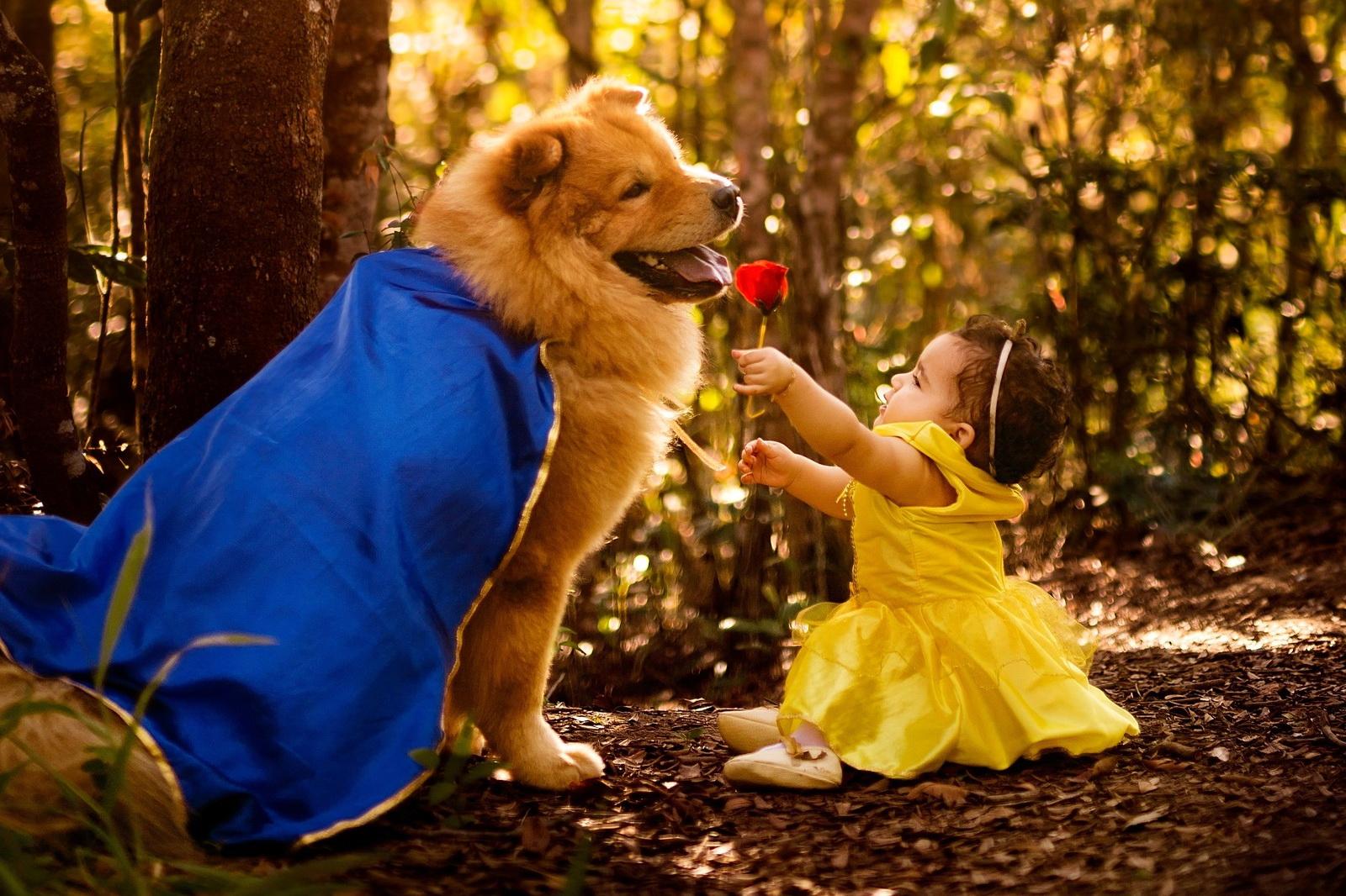 Ensaio bebê cachorro a bela e a fera 1