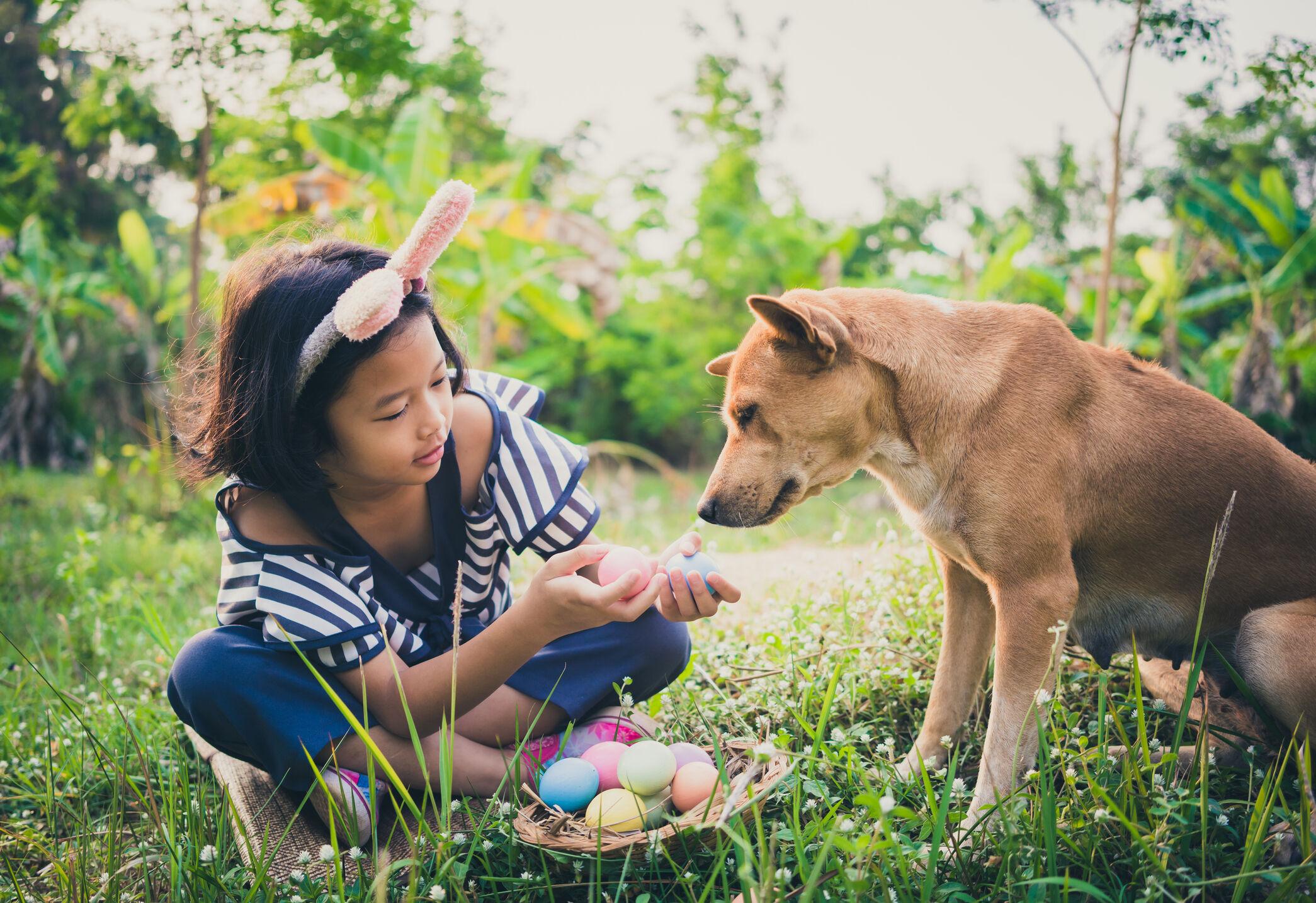 menina-cachorro-pascoa