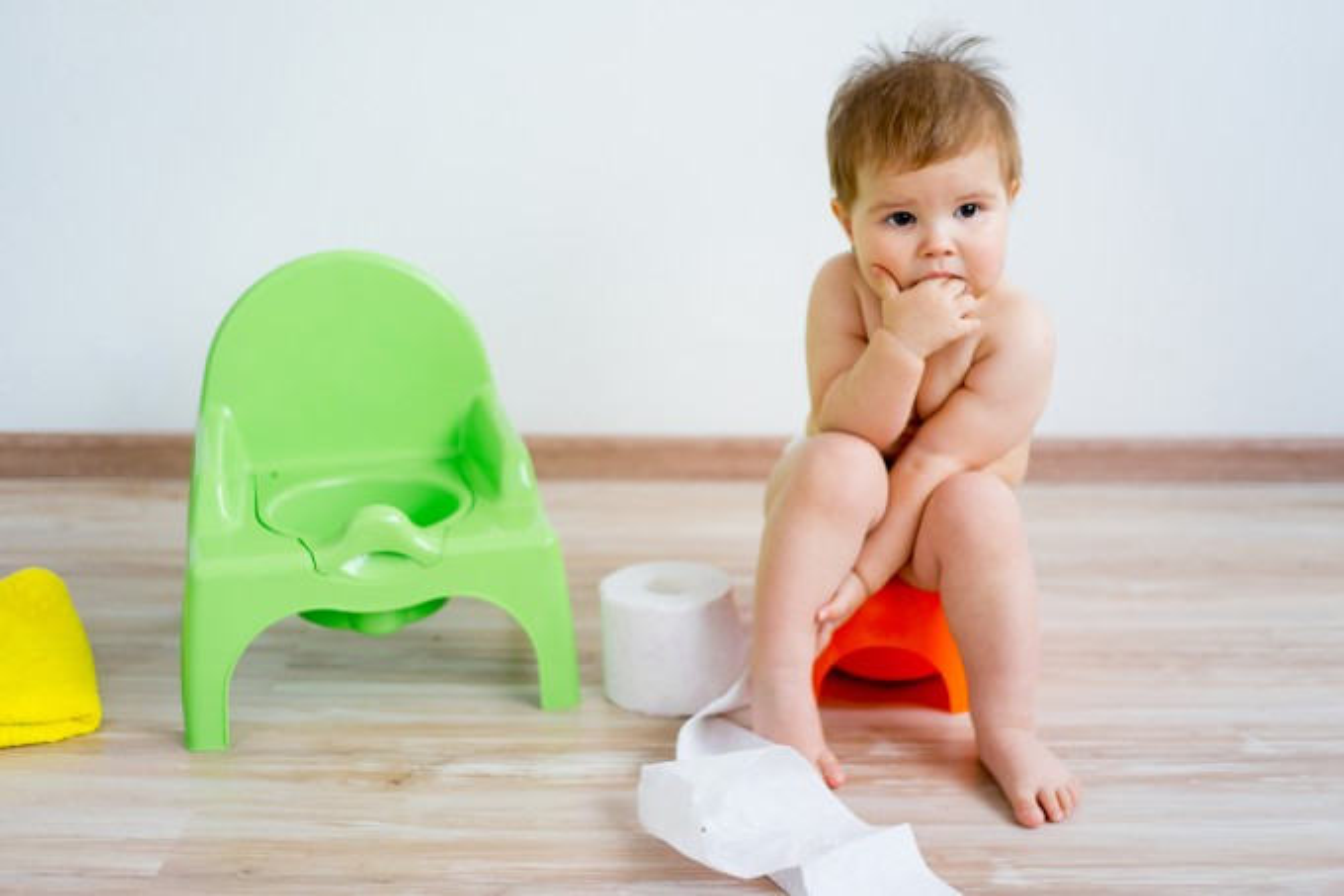 Bebê sentado no penico desfralde