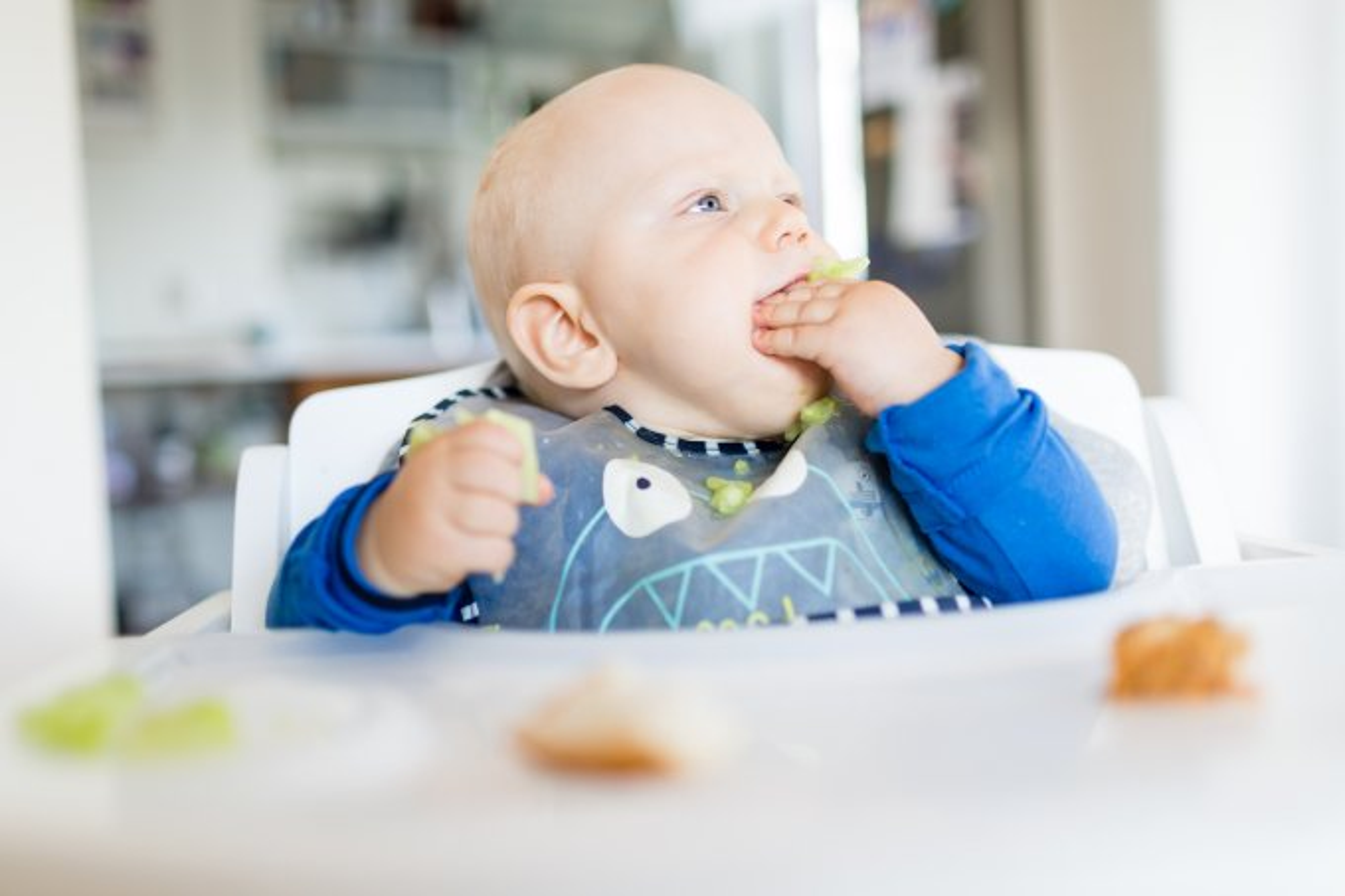 Bebê comendo pelo método BLW